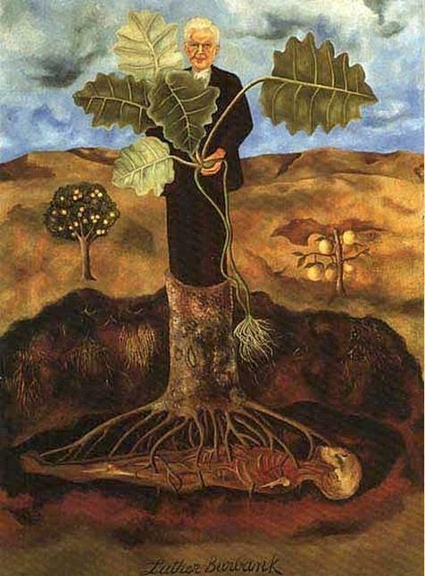"""Luther Burbank era un botanico e orticoltore al quale si deve la creazione di 800 varietà di piante, tra cui la mora bianca e un particolare crisantemo. Frida Kahlo ne dipinse un ritratto che parla di morte, ma anche e soprattutto di rigenerazione. E mi piace pensare che le cose stiano davvero così... Frida Kahlo, """"Ritratto di Luther Burbank"""", 1931. Collezione Dolores Olmedo, Città del Messico"""