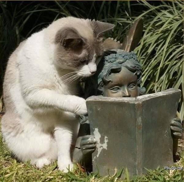 Scuola di lettura fra le anticaglie