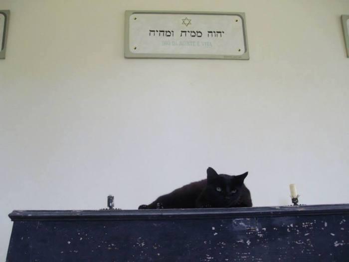Ferrara, camera mortuaria cimitero ebraico