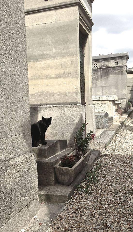Cucù, a Montmartre