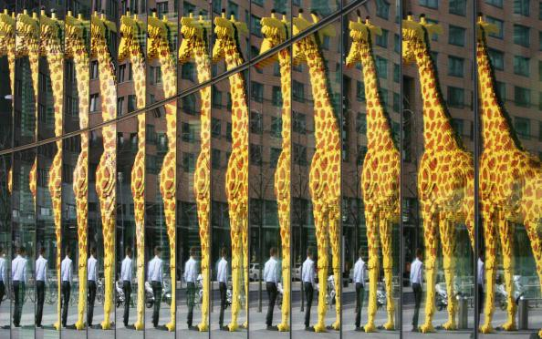 A man walking past a giant giraffe made
