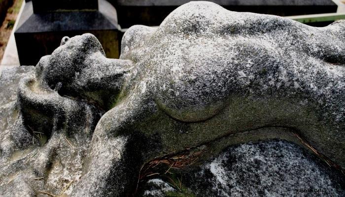 Monumento Maria Beruccini, Reparto IX «Non dire ad alcuno perché sono morta» recita un'epigrafe sul fianco. Numerose sono le leggende legate a questa tomba, tra cui quella che vuole che la giovane donna sia morta suicida per amore all'età di 24 anni. Maria si è portata nell'aldilà il suo segreto, ma la bellezza e l'erotismo del suo corpo esanime continuano ad ammaliare gli osservatori furtivi di questa splendida scultura nascosta tra il verde dei viali alberati.