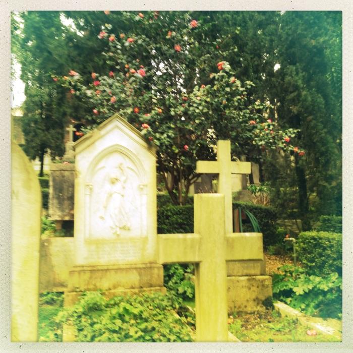 Vegetazione rigogliosa, Cimitero Acattolico di Roma