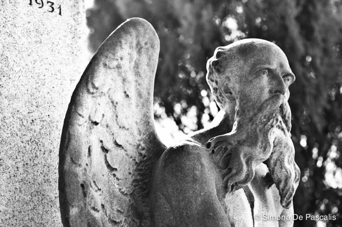 Tomba Dini, I ampliazione. Un vecchio dallo sguardo triste e stanco, con due lunghe ali dietro la schiena, è seduto alla base di una colonna, in cima a cui si trova il busto di un giovane uomo. È il Tempo, che ha posato vicino a sé la falce e una clessidra rotta e tiene ora in mano una pergamena su cui è scritto il famoso verso di Francesco Petrarca: «Cosa bella e mortal passa e non dura». Così lo scultore Giuseppe Dini ha voluto eternare il ricordo del figlio Dario, scomparso improvvisamente a soli 23 anni.