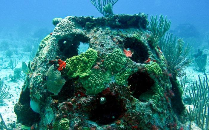 Eternal-Reefs-burial-at-sea-reef-ball-1