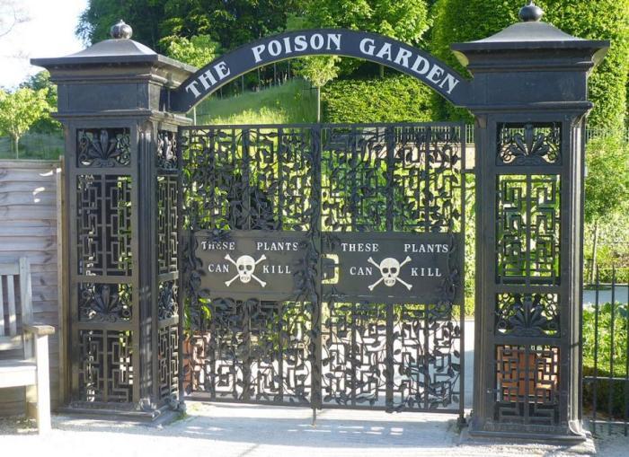 Poison_garden_4