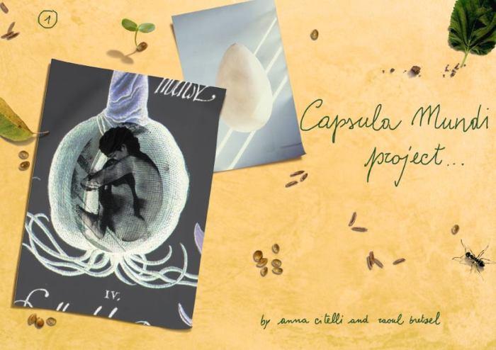 capsula-mundi-3